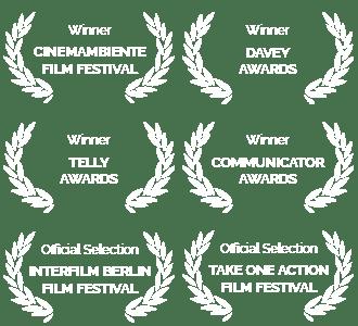Source International Awards